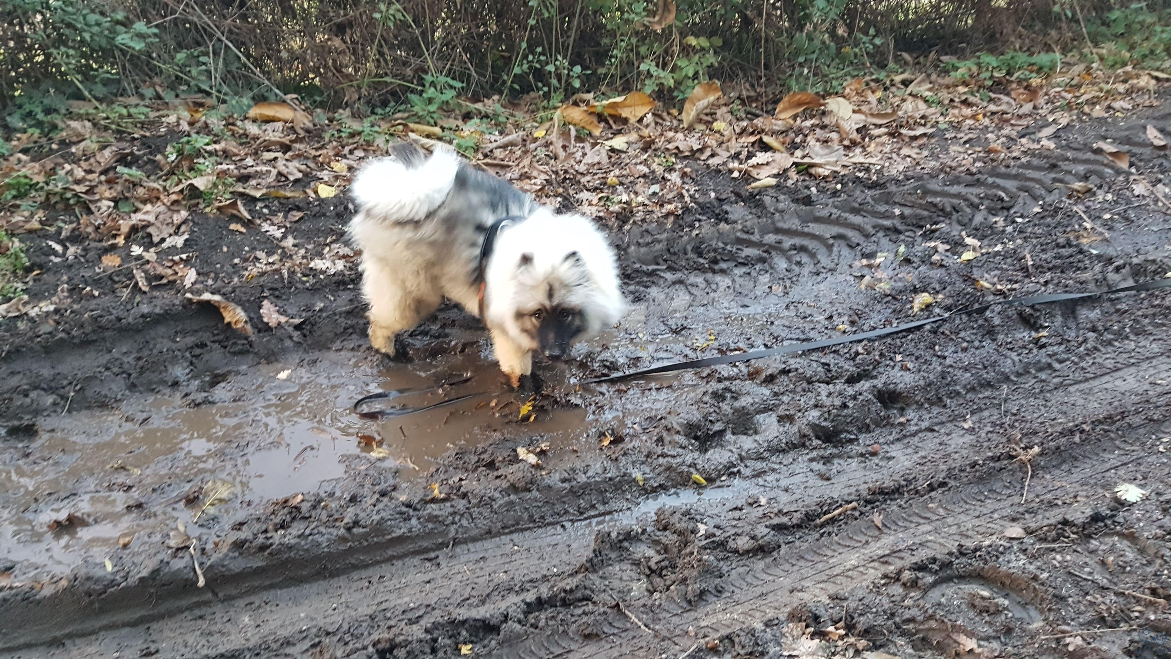Naya prend des bains de boue!