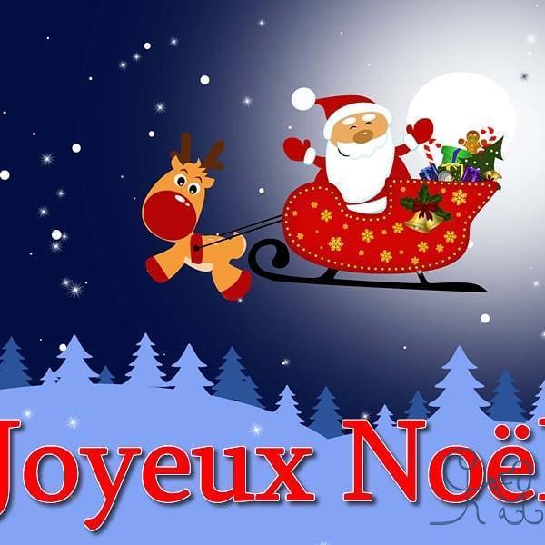 [Divers] très bon Noël à tous ! À très vite ! #objectifchiens