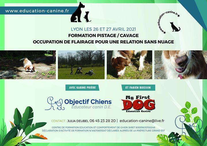 Photos de la publication de Centre Education et comportements du chien