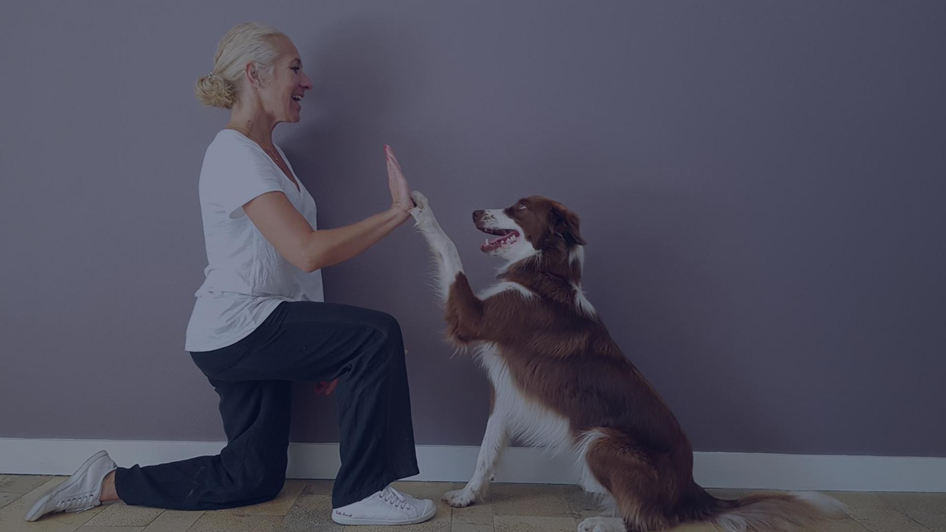 Educatrice canin spécialisée Rhône Alpes